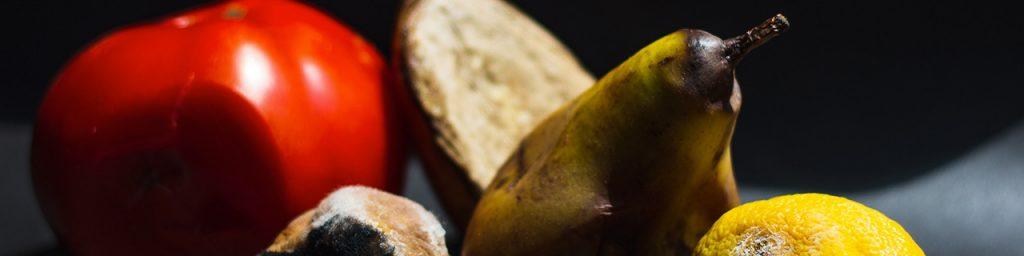 Le Centre de Recherche en Nutrition Humaine Rhône-Alpes recherche des volontaires